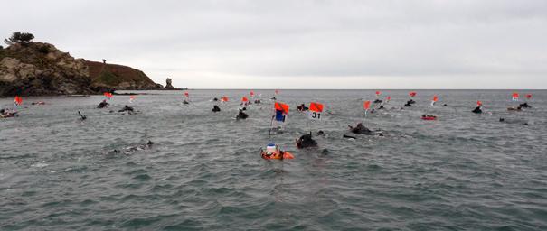 Compétition de chasse sous  marine à la palme - départ